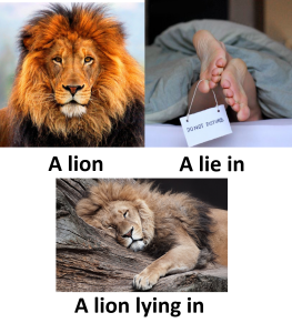 The difference between a lion and a lie in